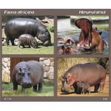 mec838 - Fauna africana - Hipopotamul - bloc n