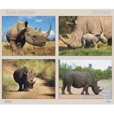 mec931 - Fauna africana - Rinocerul - bloc n