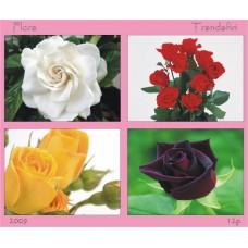 mec1164 - Flora - Trandafiri - bloc n