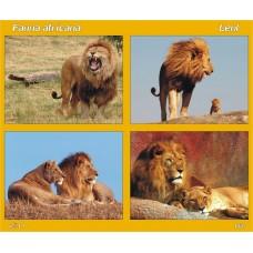 mec1281 - Fauna africana - Leul - bloc n