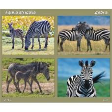mec1344 - Fauna africana - Zebra - bloc n